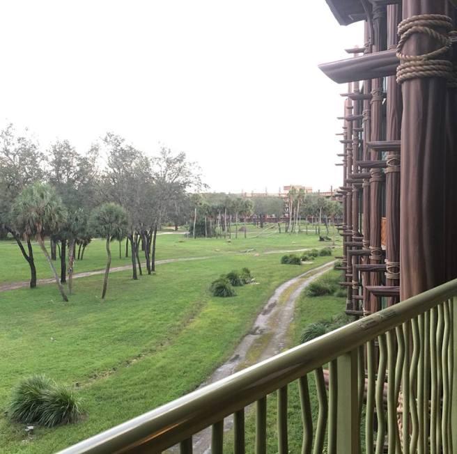 Kidani Balcony